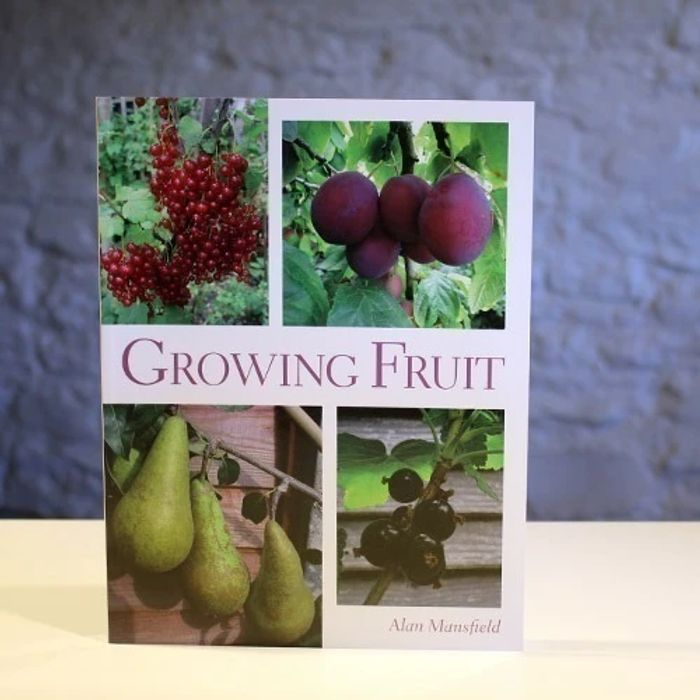 Growing Fruit - 50% Off