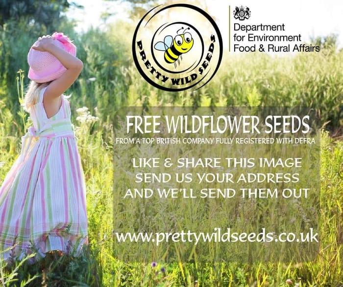 Free Pretty Wild Seeds