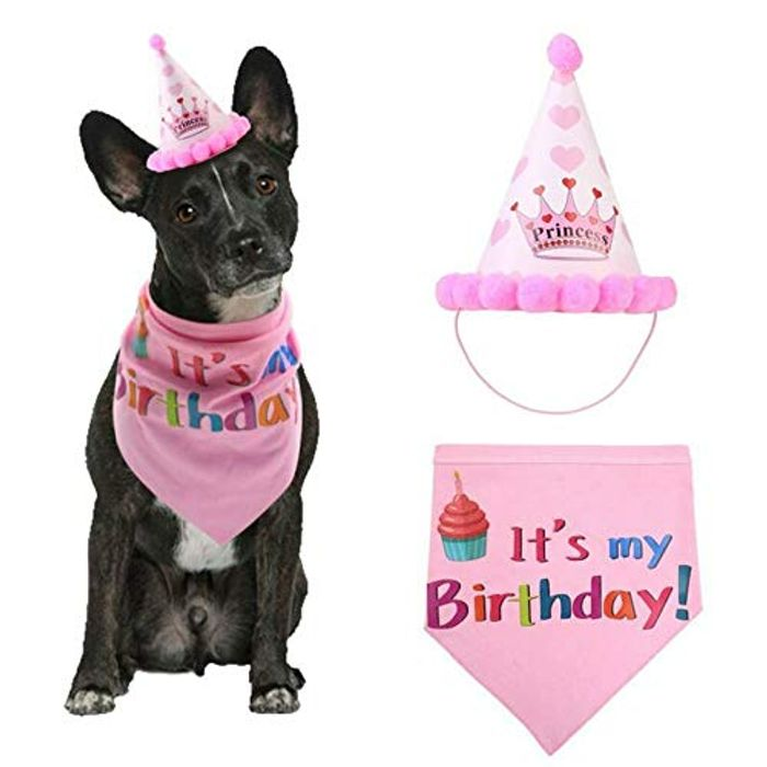 Cheap Dog Birthday Dress Up at Amazon Only £4.49!