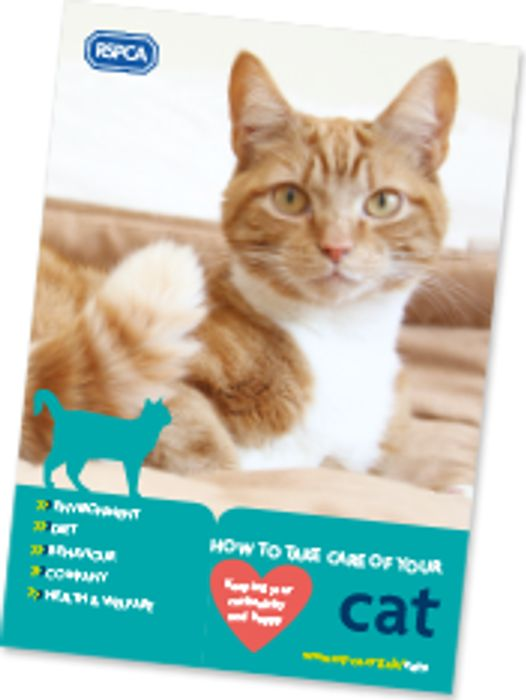 RSPCA Cat Care Booklet