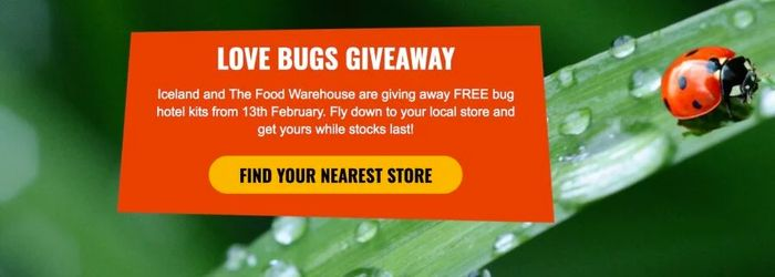 FREE Bug Hotel Kit at Iceland and the Food Warehouse