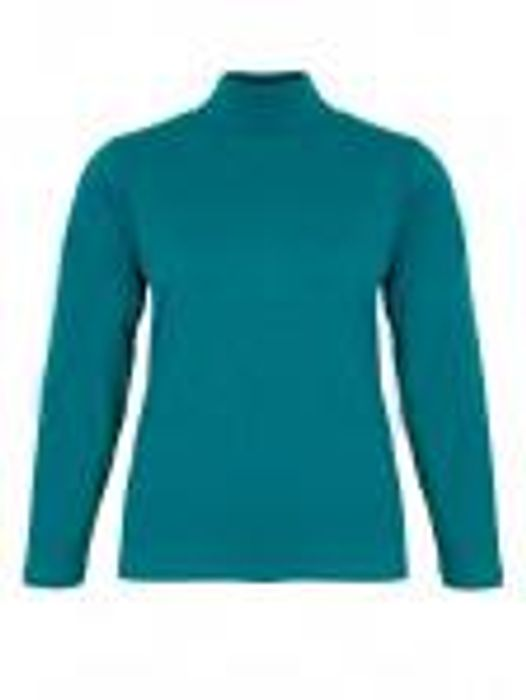 Polo Neck Top - Only Size Small Still Available