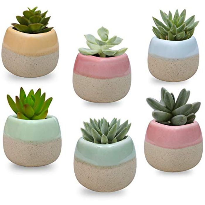 Mini Ceramic Planter Pot Set 6 Pack