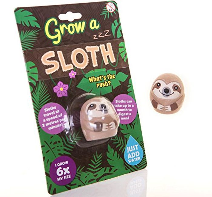 Grow a Sloth at Amazon - Only £4.79!