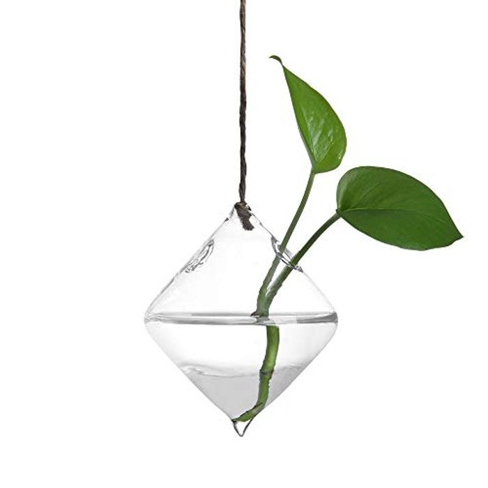 Plant Transparent Vase Creative Hanging Glass Flower Container for Home Decor
