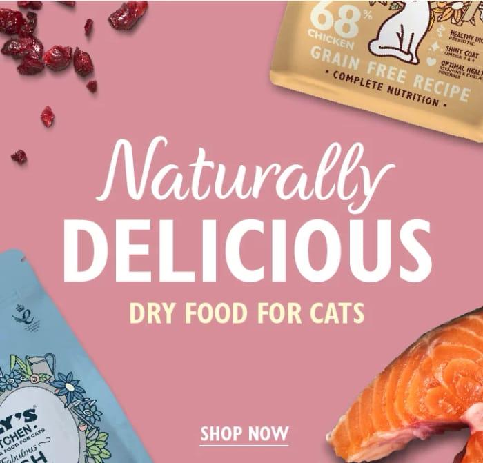 Free Lili's Kitchen Pet Food Sample