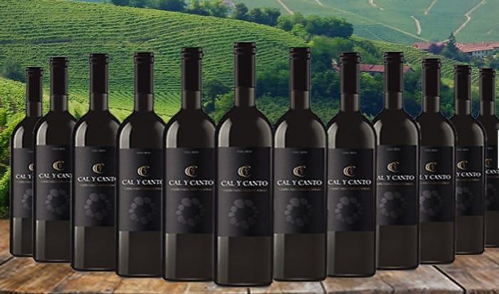 12 Bottles of Award-Winning Cal Y Canto Castilla Red Wine + EXTRA 10% Off