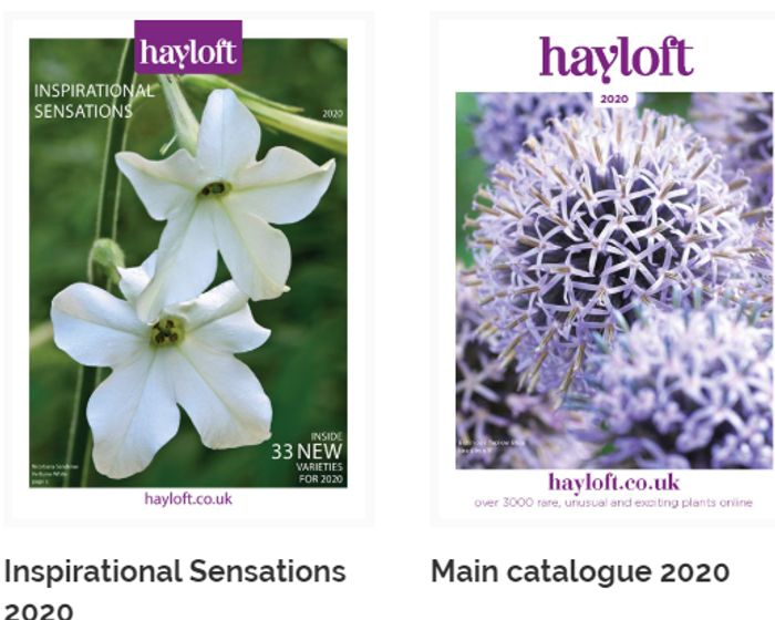 Get Your Hayloft Catalogue FREE BY POST