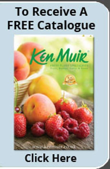 Free Ken Muir Catalogue