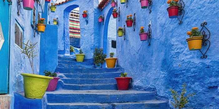 £499pp Morocco: 8-Nt Escorted Tour W/flights, save £500