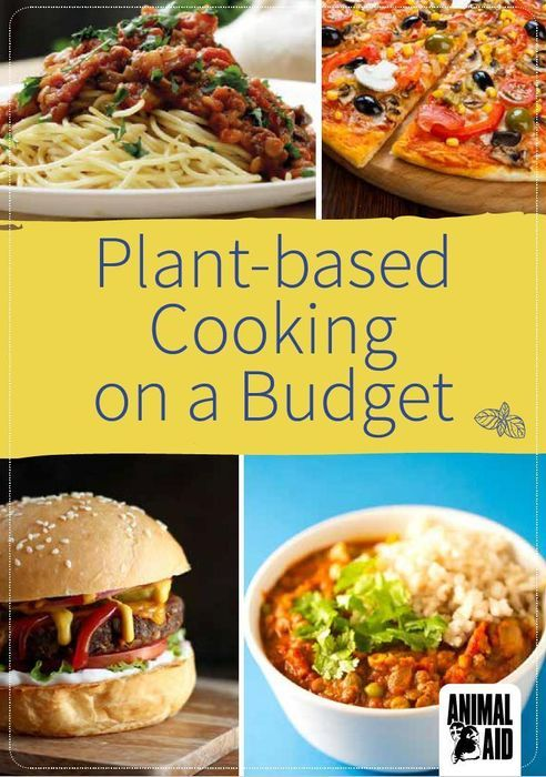 Free Copy of Plant-Based Cooking on a Budget