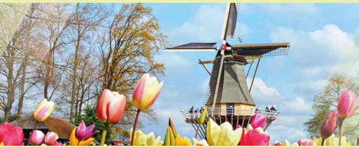 52% off Newcastle to Amsterdam Bookings at DFDS Seaways