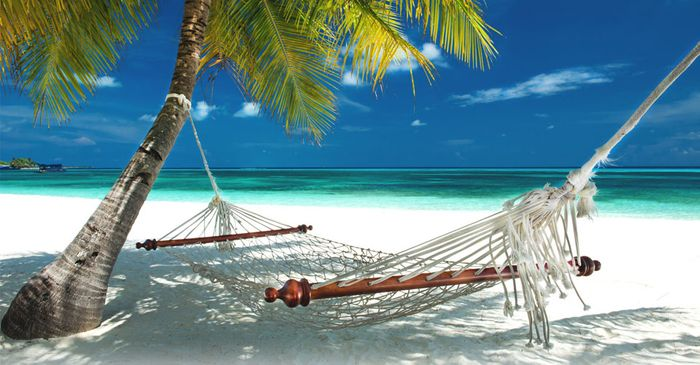 Up to 20% off Travel Insurance Orders at Insure More Travel Insurance