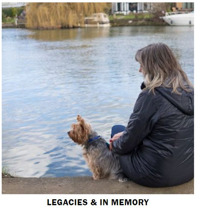 Request A Battersea Gift In Wills Information Pack FREE BY POST