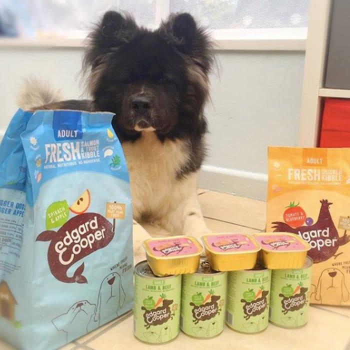 Free DOG Food Trial Box