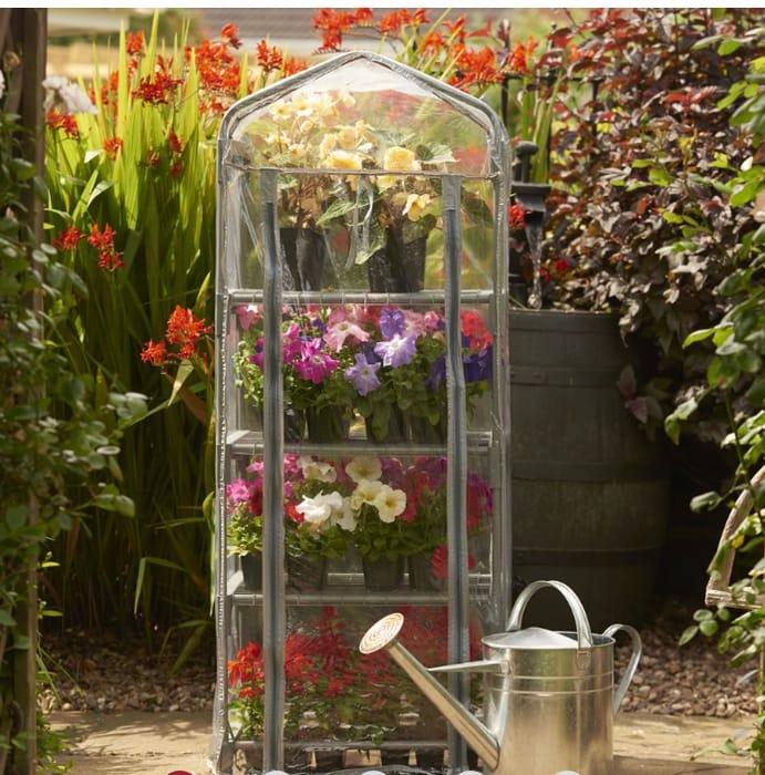 Bargain Price - Mini Greenhouse - £15 at Wilko