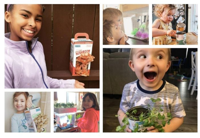 Gardening Kits for Your Students/children