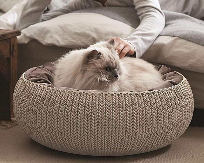Best Price! Curver Pets Cozy Small Dog & Cat Bed with Cushions Light Brown 54 Cm
