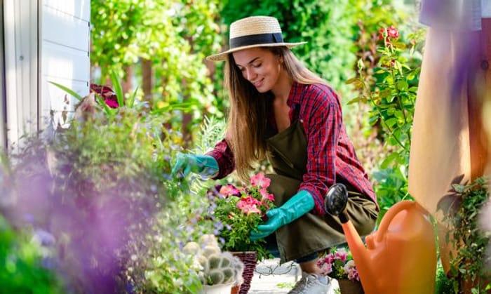 60% off an Online Urban Gardening Course