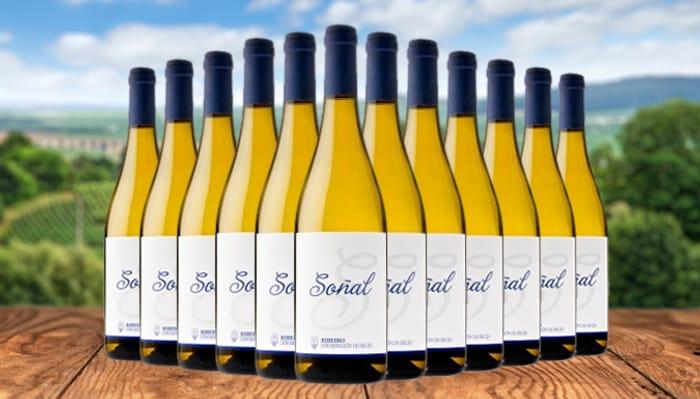 12 Bottles of Ribeiro Galician Spanish White Wine