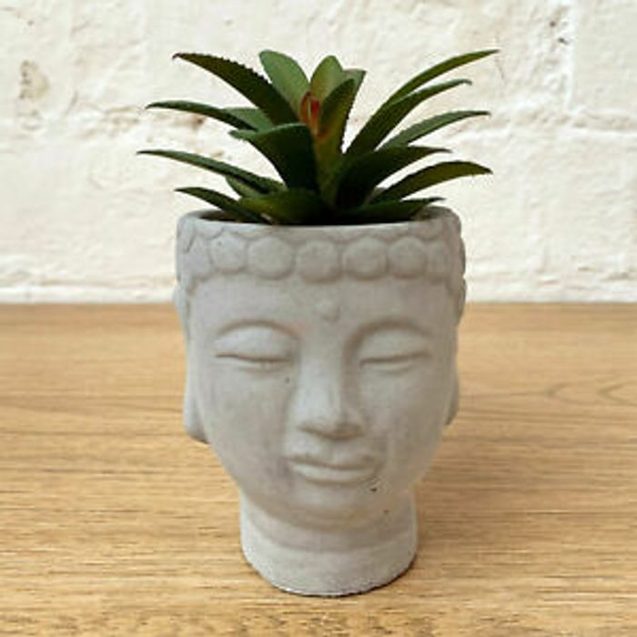 Grey Buddha Head with Faux Succulent *Multi Buy Available