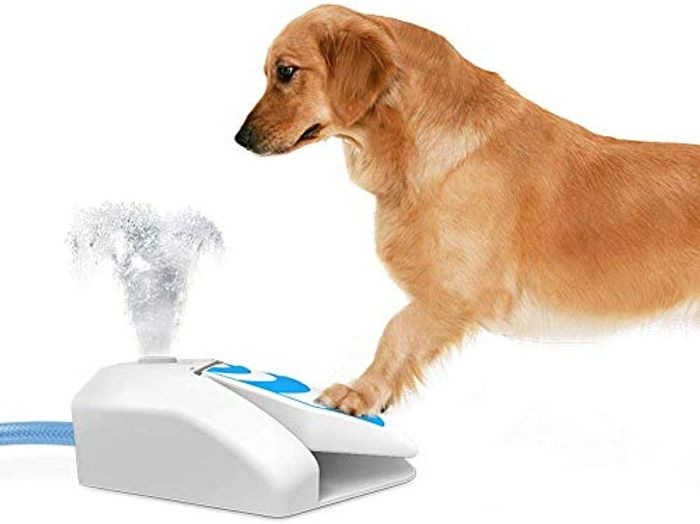 Dog Cooling Water Fountain