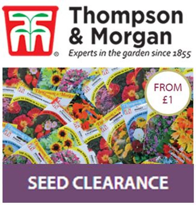 Best Price! Thompson & Morgan SEED CLEARANCE - £1 a Pack!