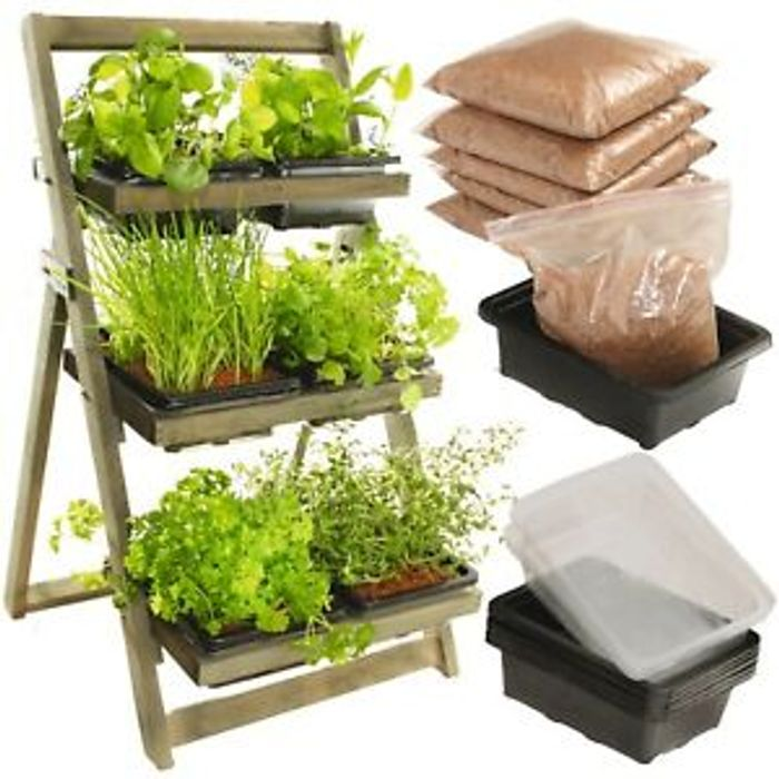 Wooden Rack with 6 Plastic Seed Trays £27.96 Delivered