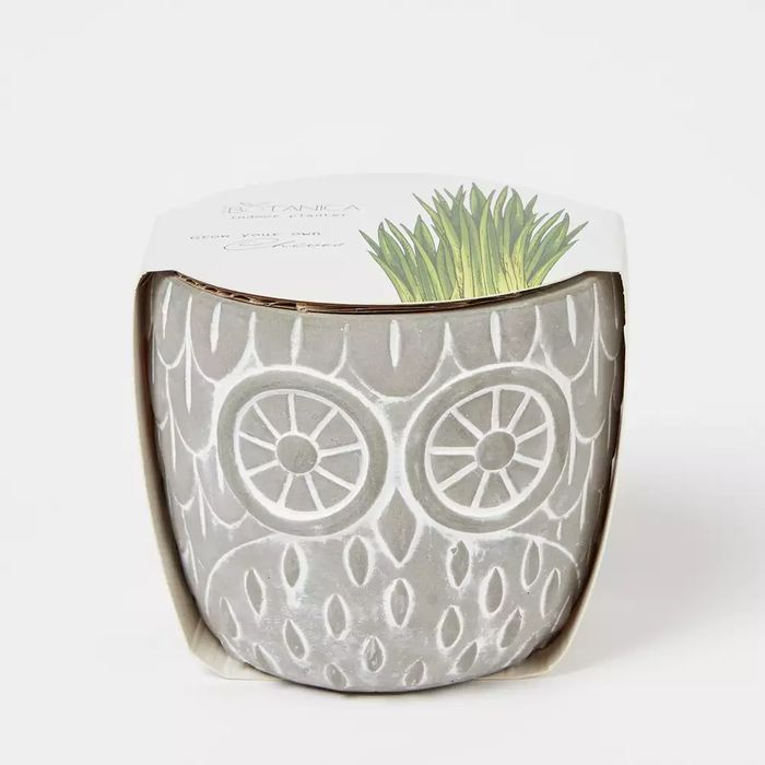 Sweet Botanica - Grow Your Own Chives Owl Planter