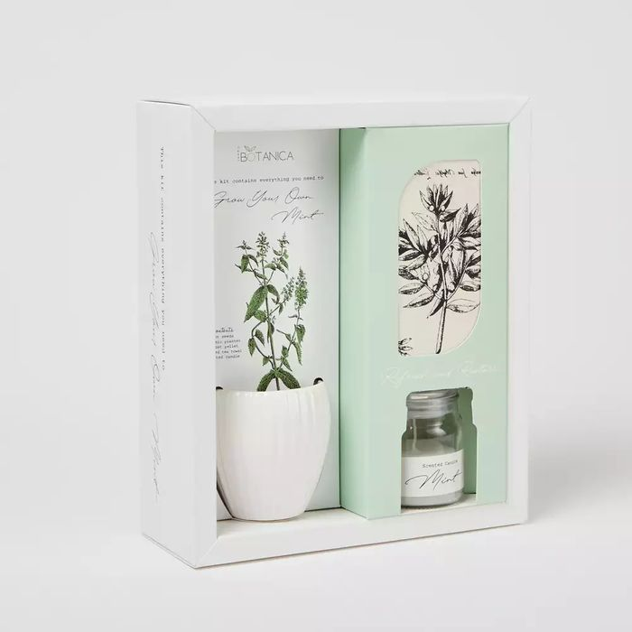 Cheap Sweet Botanica - Grow Your Own Mint and Scented Candle Kit - Only £14!