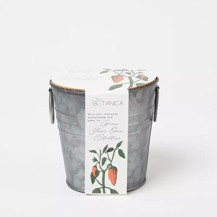 Sweet Botanica - Grow Your Own Demon Red Chillies Zinc Planter Kit