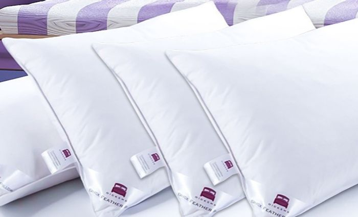 Hotel Quality Extra-Filled Duck Feather Pillows + EXTRA 10% Off