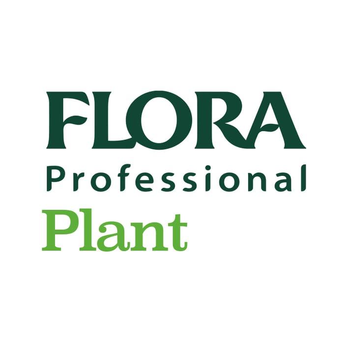 Flora Plant Double Cream