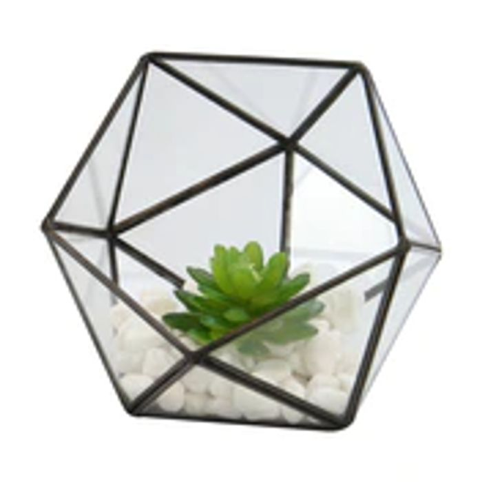 Half ball glass Terrarium
