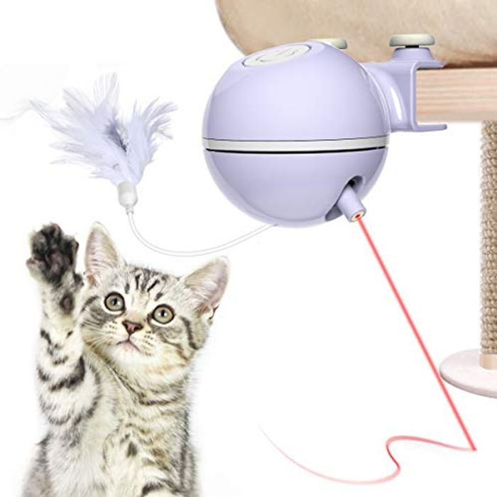Motorized Cat Toy and Light