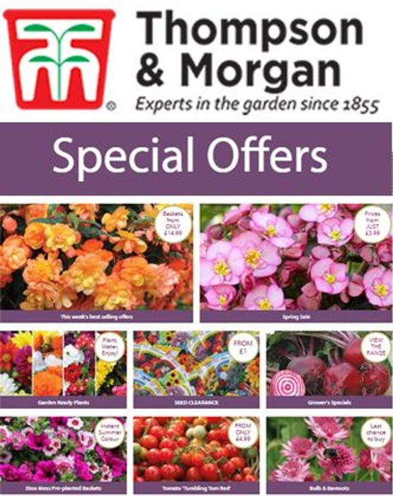 Thompson & Morgan SPECIAL OFFERS on Plants, Seeds, Fruit & Veg