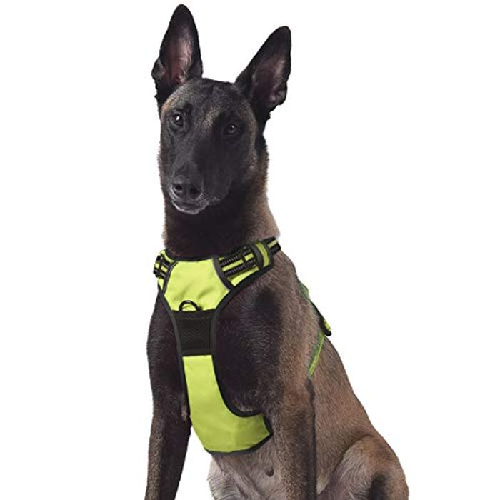 65% off No Pull Dog Harness