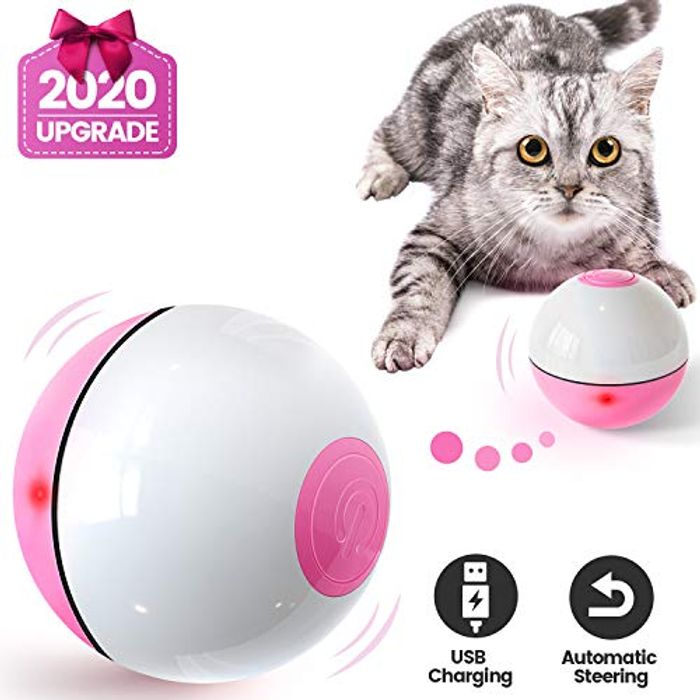 Interactive Cat Toys Wicked Ball for Indoor Cats, Auto 360 Self-Rotating