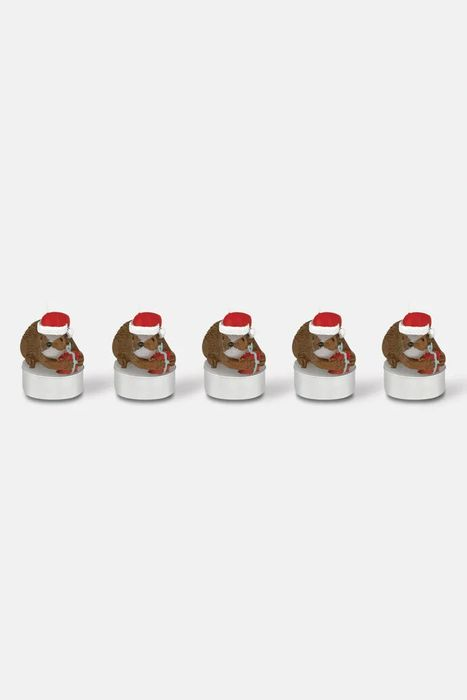 Set of 5 Hedgehog Tea Lights