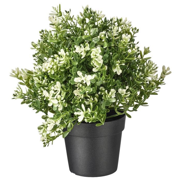 Artificial Potted Plant, Thyme9 Cm - Only £5!