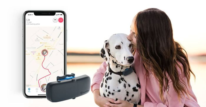 £20 off GPS Tracking for Cats and Dogs