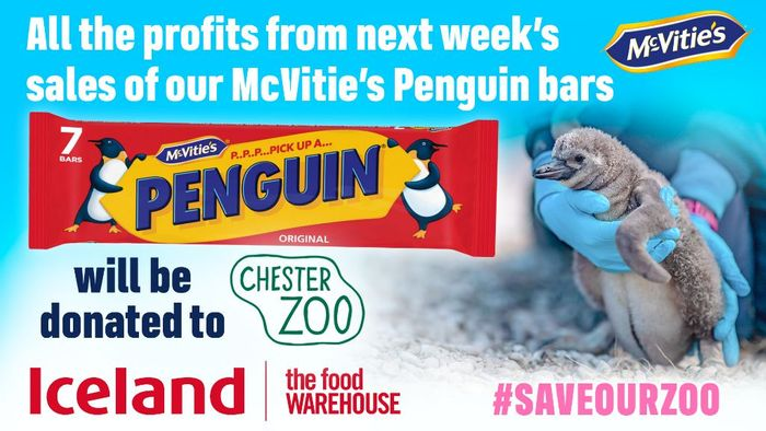 Help Chester Zoo! Buy Penguins from Iceland this Week & Profits Go to the Zoo