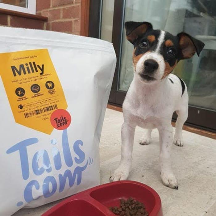 FREE Large Bag Of Dog Food Worth £27 (Just £1 P&P!)