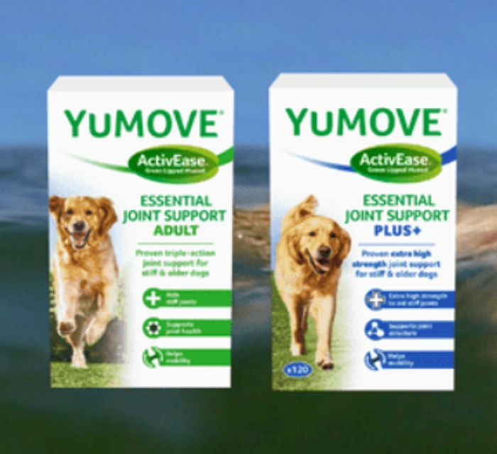 Get Your 2 Week Trial of YuMOVE for Dogs for Just £5