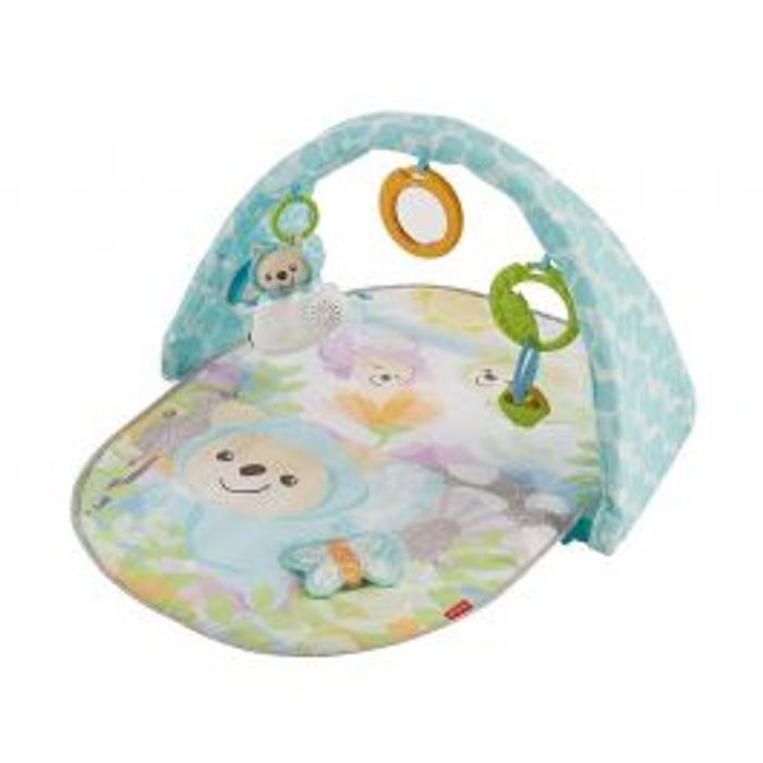 Fisher Price Butterfly Dreams Musical Activity Gym