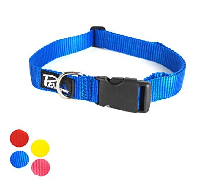 Dog Collar - Bold Durable Nylon