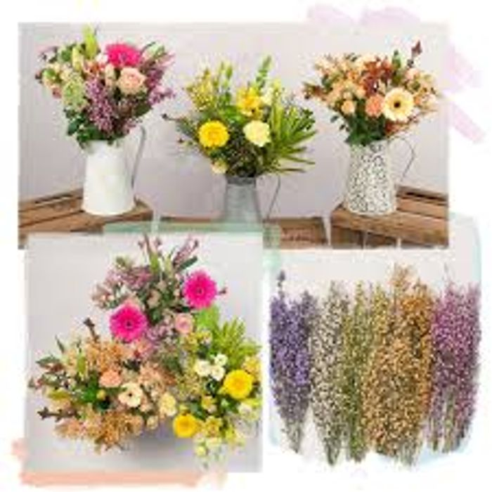 Save 12% on All Orders including Flowers , Plants , Gifts, Balloons , Hampers