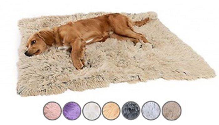 Plush Shaggy Pet Blanket - 7 Colours