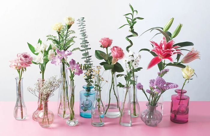 12% off Summer Flowers and Plants at Bunches