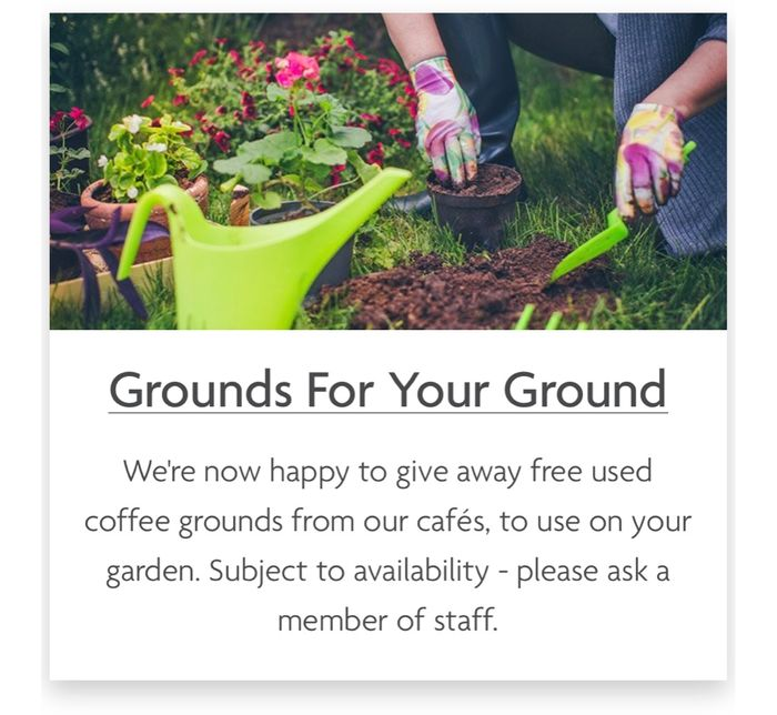 Free Coffee Grounds